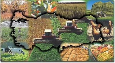 tarımvehayvancılık